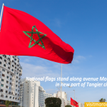 National-flags-stand-along-avenue-Mohammed-VI-in-new-part-of-Tangier-city,-Morocco