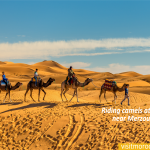 Riding-camels-at-Erg-Chebbi-near-Merzouga.-Sahara