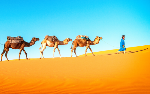 3 DAYS DESERT TOUR FROM FES TO SAHARA DESERT IN MERZOUGA